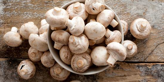 خواص قارچ و بهترین روش های پخت آن