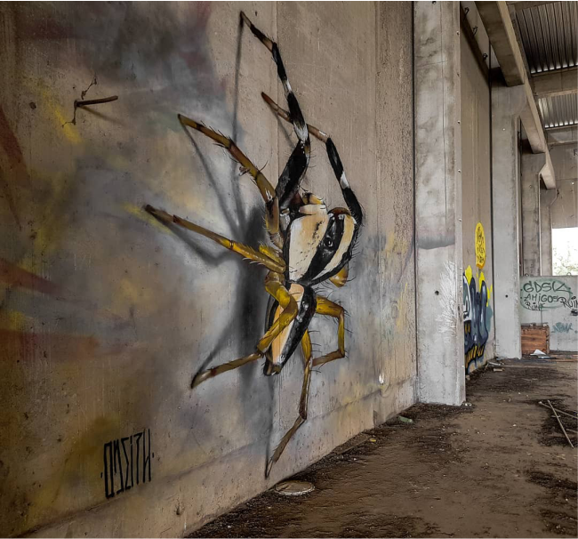 هنرهای خیابانی برجسته روی دیوار خیابانهای متروکه