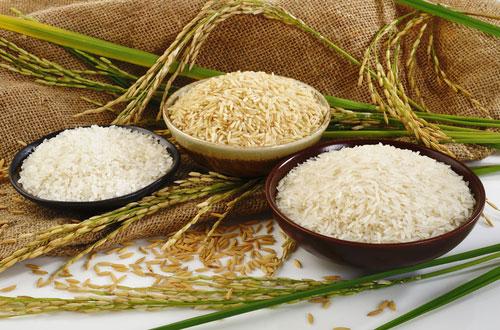 باورهای غلط در مورد برنج و لاغری